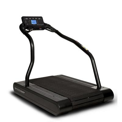 Woodway Pro Treadmill