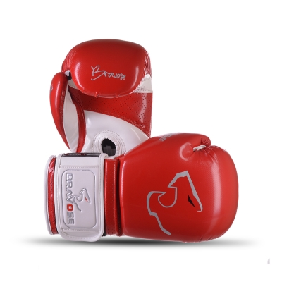 Alpha Boxing Gloves Red