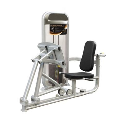 Dual Series, Leg Press/Calf Raise