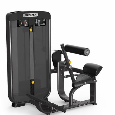 Spirit Fitness Back Extension
