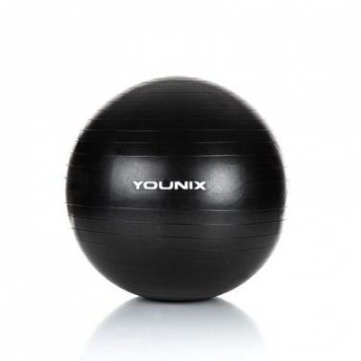 Stability Ball Pro 65